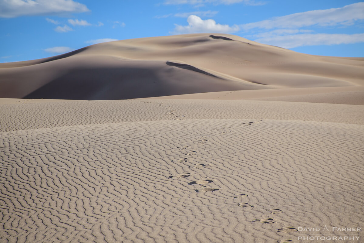 Bedforms and footprints | Great Sand Dunes National Park