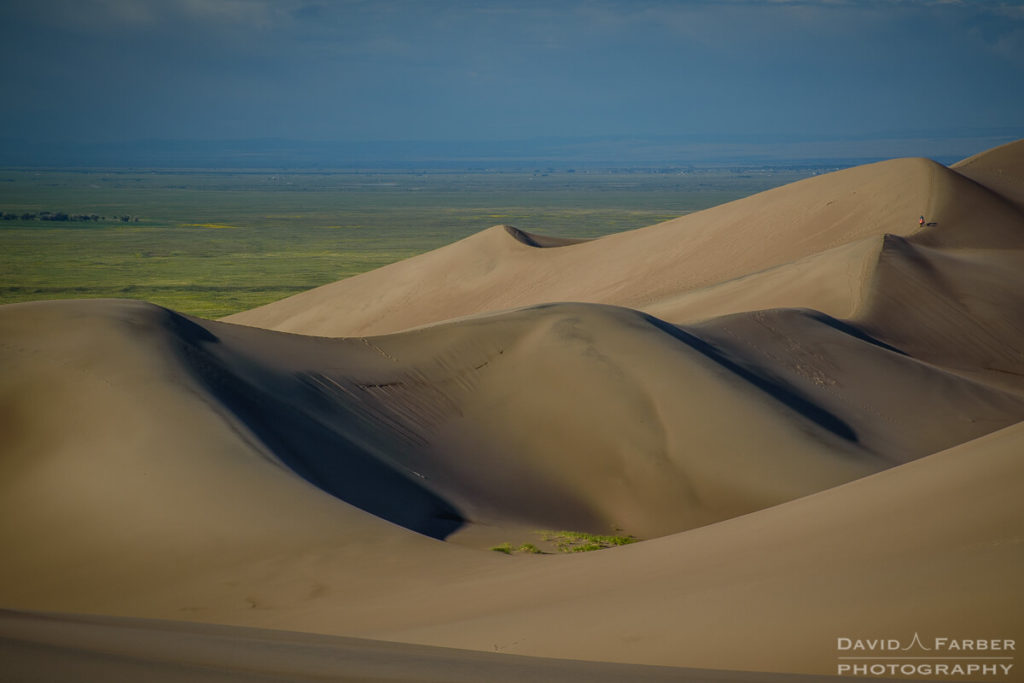 Sand dunes in the morning | Great Sand Dunes National Park