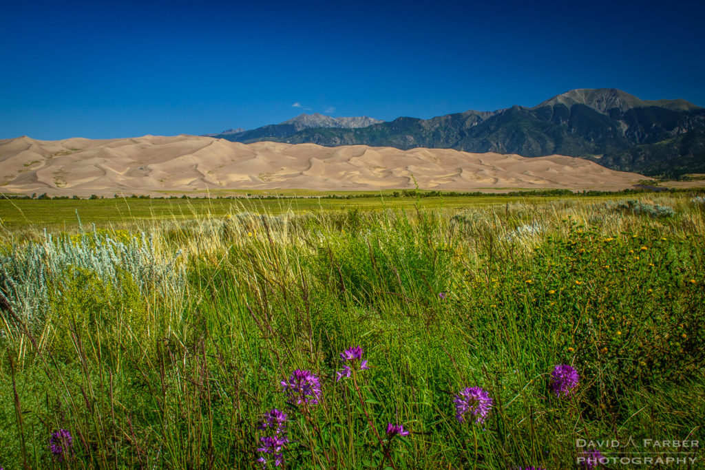 Entering Great Sand Dunes National Park