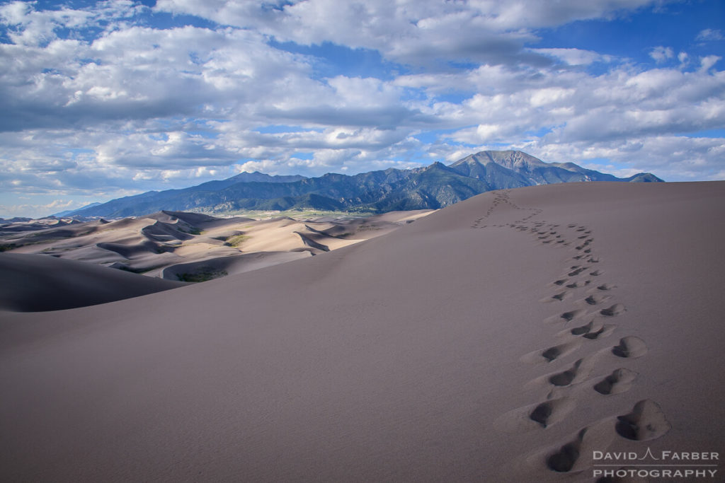 Wandering footprints on the dunes | Great Sand Dunes National Park