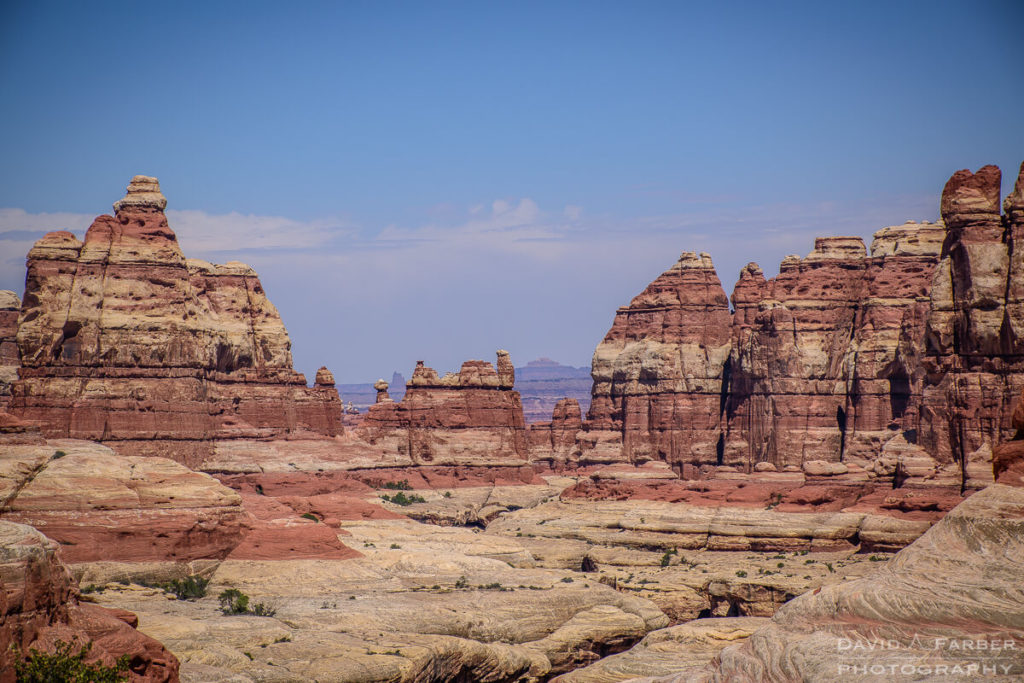 Upper Elephant Canyon | Canyonlands National Park